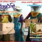 Honey bee farming - Skill Development Program